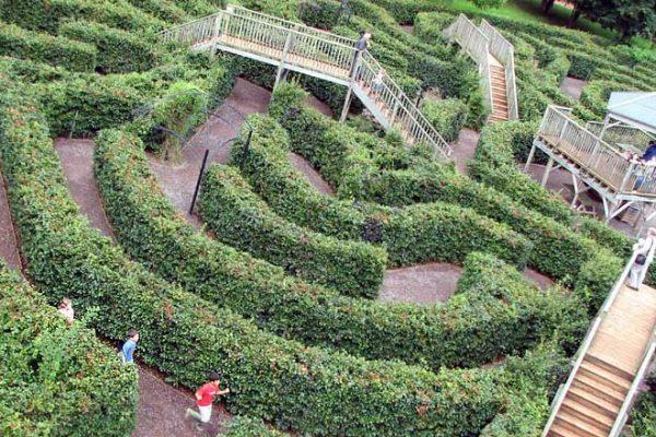 escot-maze-aerial